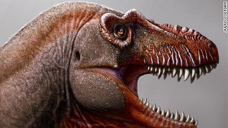 A farmer discovers a new type of dinosaur, one of the oldest dinosaurs to have ever existed